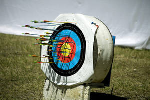 Girl Scouts to Ask Permission for Archery in Glen Farm Park